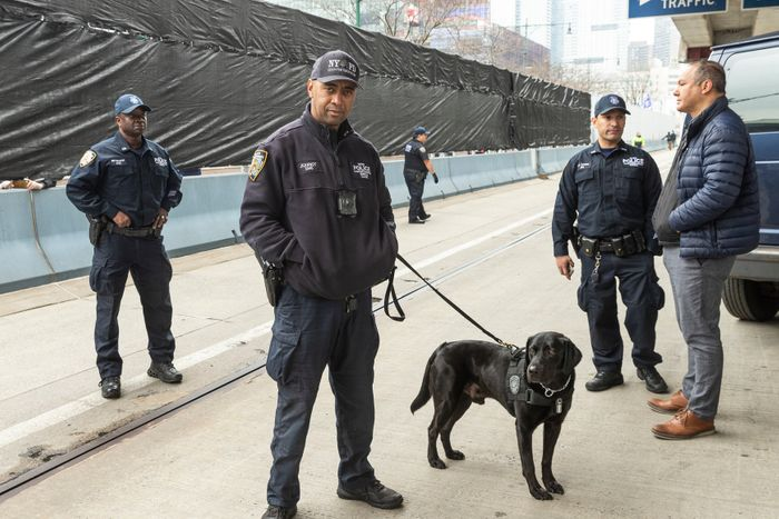 hospital security guards in new york